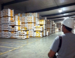 Seed Warehouse
